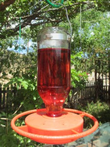 cherry-colored-feeder